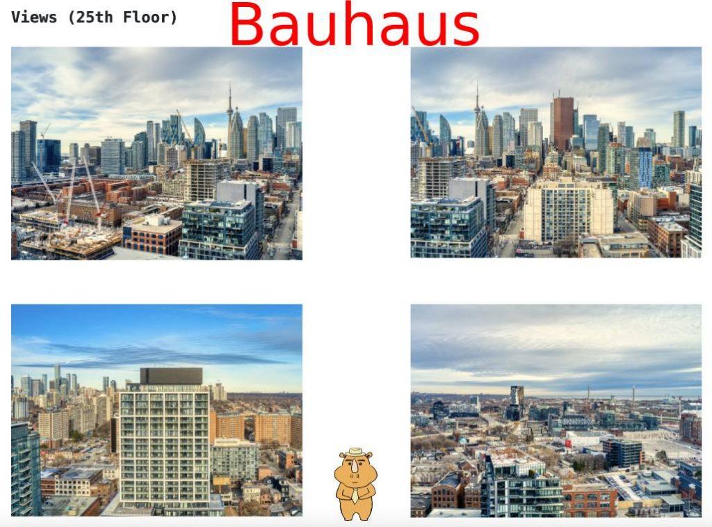 Bauhaus view 多伦多地产犀牛