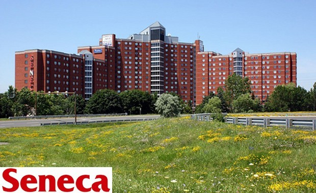 seneca college 多伦多地产犀牛