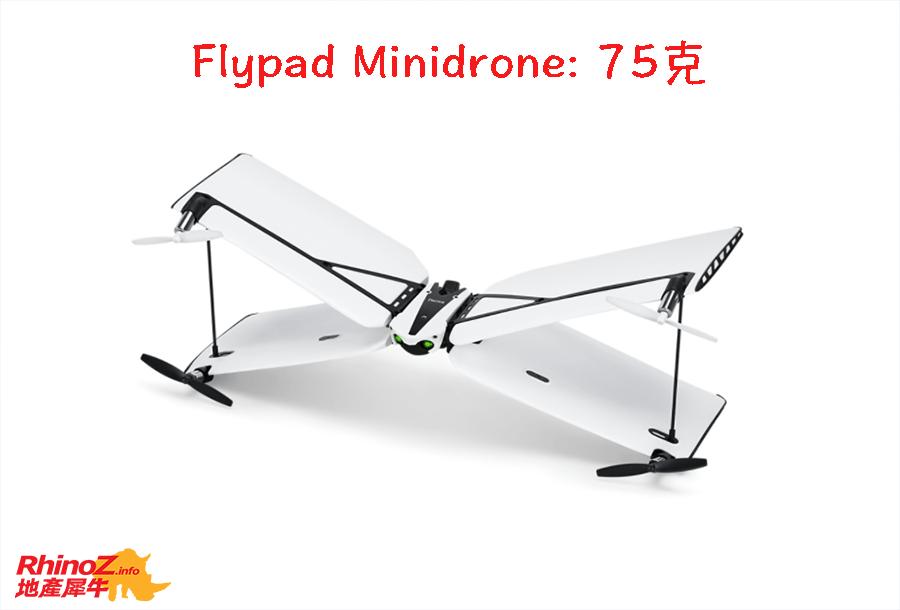 Drone Flypad 多伦多地产犀牛