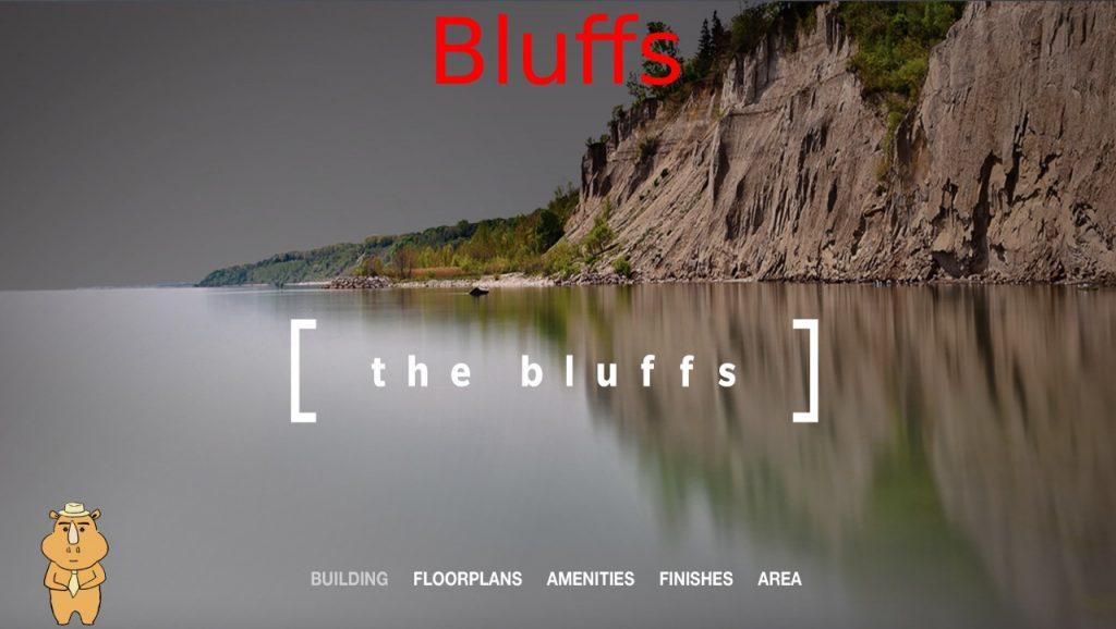 楼花转让-Bluff
